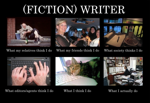 fiction-writer